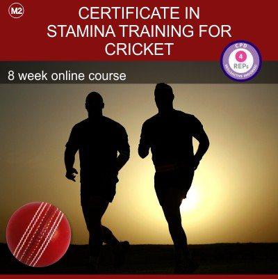 certificate_cricket_m2