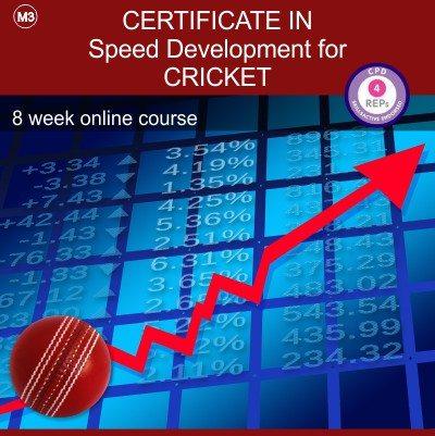 certificate_cricket_m3