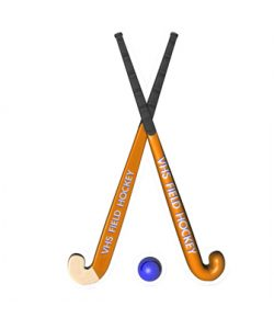 saq-hockey_2