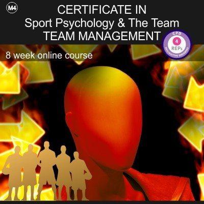 team_mod_4